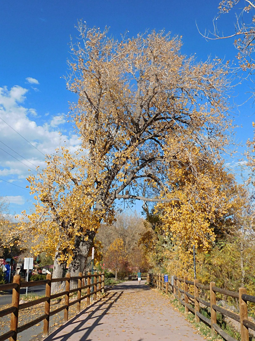 Walking Clear Creek in Golden Colorado during Month Twenty Eight of Digital Nomad Life