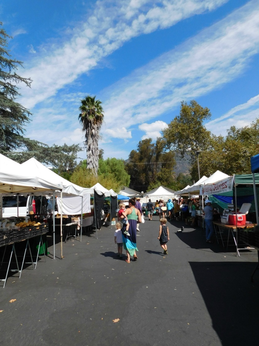 Attending the Ojai Farmer's Market during month 27 of digital nomad life