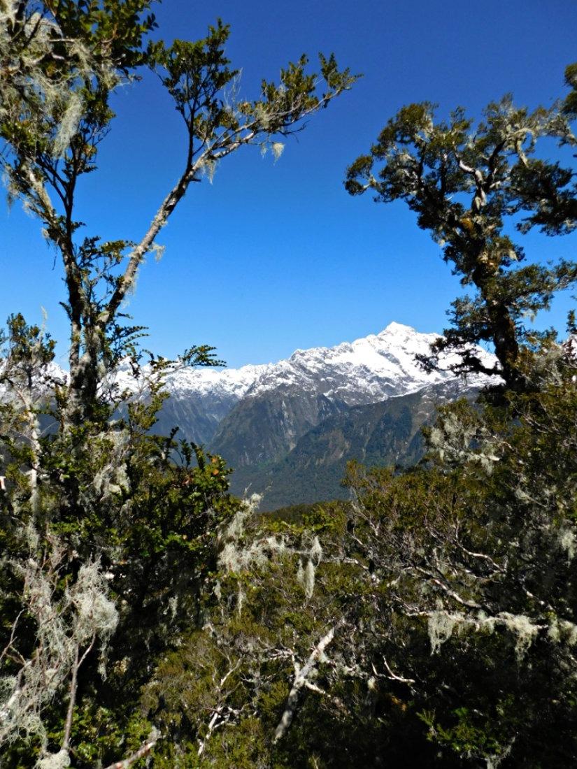 Hiking the Routeburn Track during month twenty nine of Digital Nomad Life