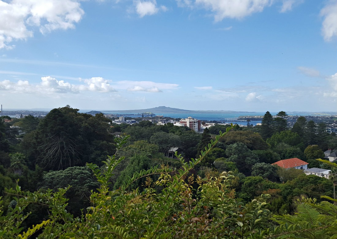 The view to Rangitoto from Eden Gardens in Auckland, New Zealand