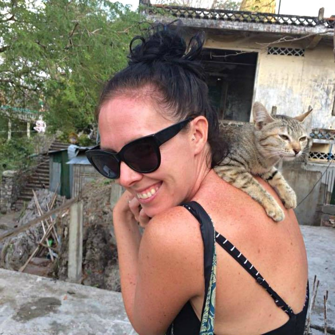 Not having pets is a downside to living a nomadic life