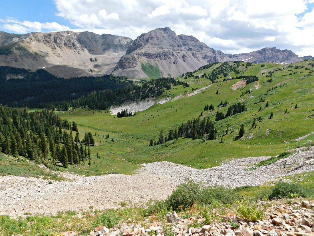 Meadow in East Maroon Valley on the hike from Crested Butte to Aspen