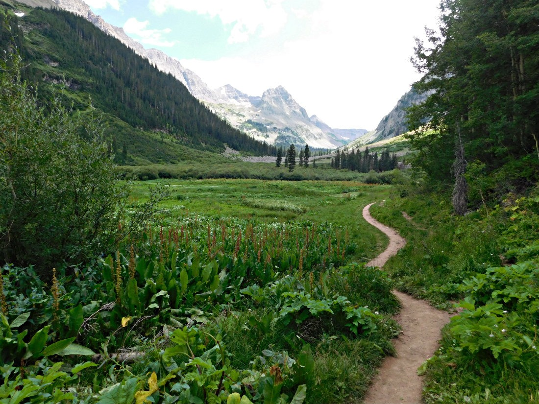 Meadow on the East Maroon Pass trail from Crested Butte to Aspen