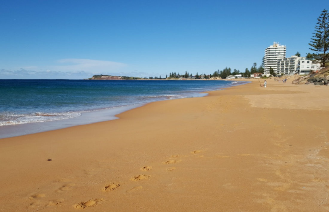 Narrabeen Beach in Sydney - a highlight of month thirty six of digital nomad life