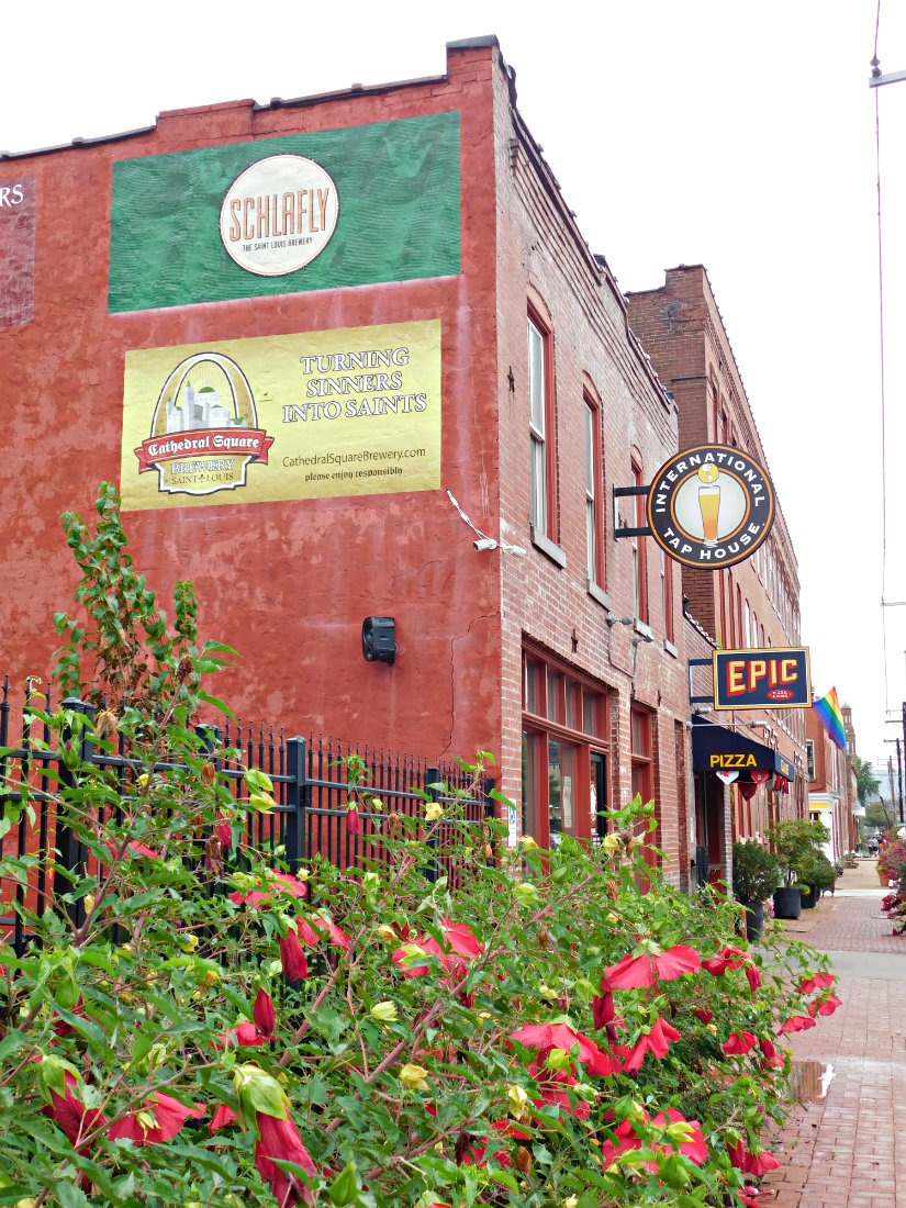 Exploring the St Louis neighborhood of Soulard during month thirty eight of Digital Nomad Life