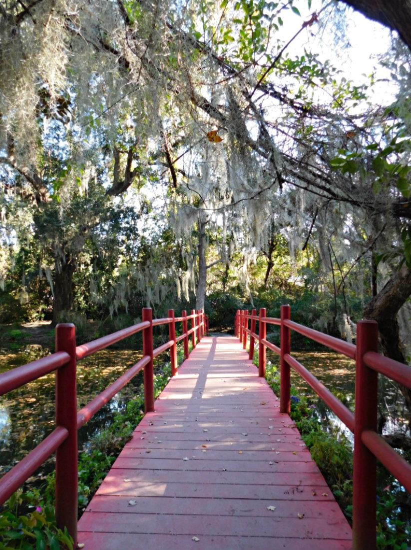 Exploring the Magnolia Plantation during Month Forty Two of Digital Nomad Life