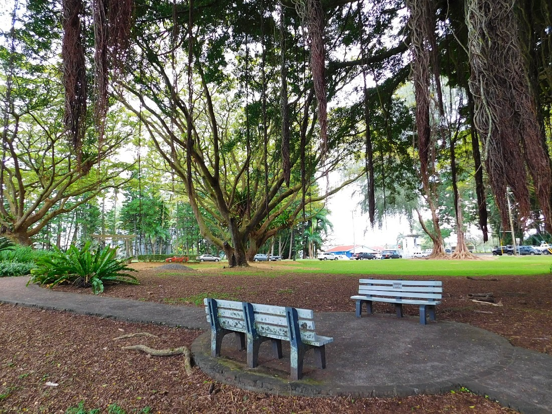 Hilo is the largest city on the Big Island and a must visit for 1 week in Hawaii