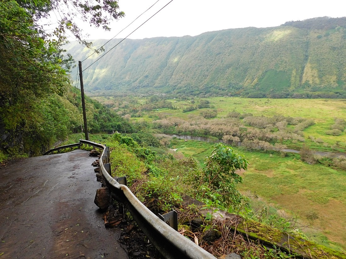 Hiking into the Wai'pio Valley is a true Hawaii adventure!