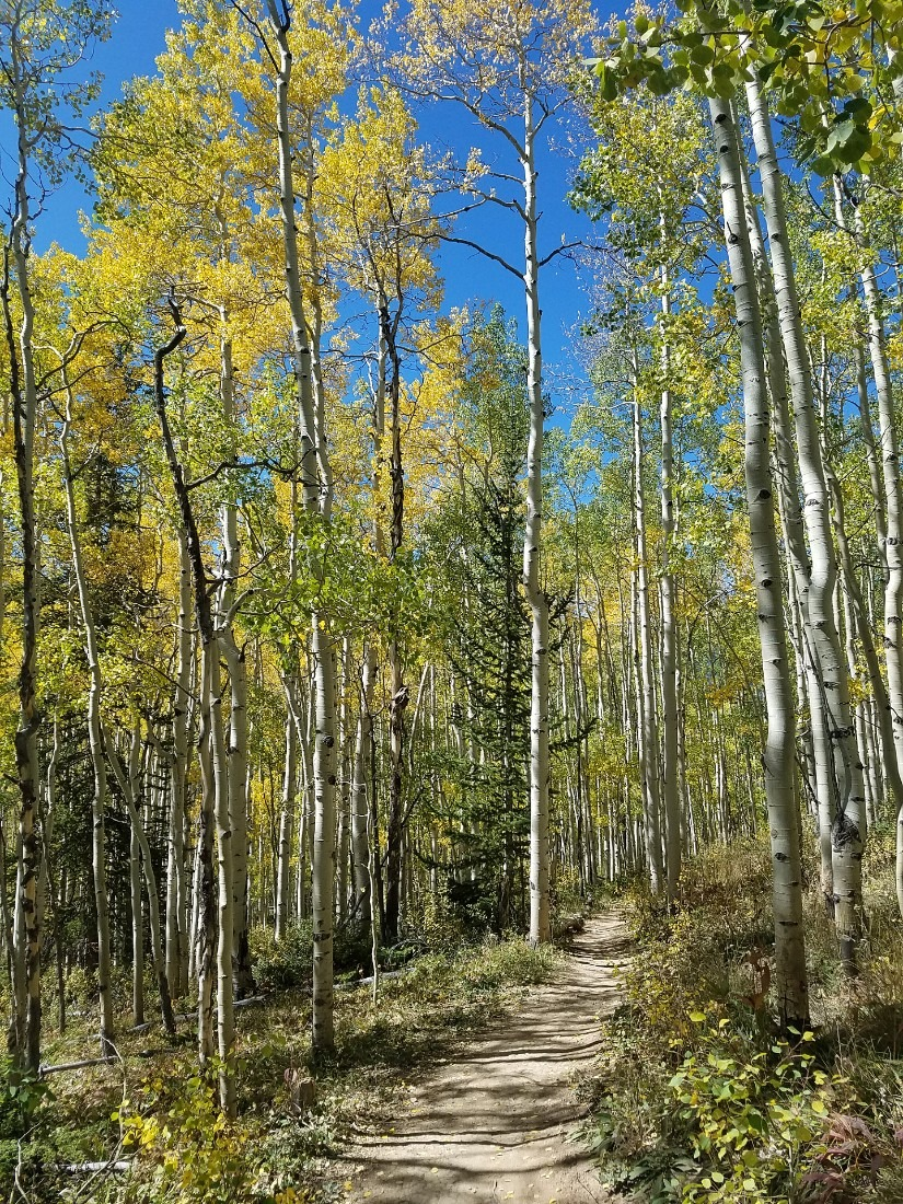 Hiking near Breckenridge, Colorado