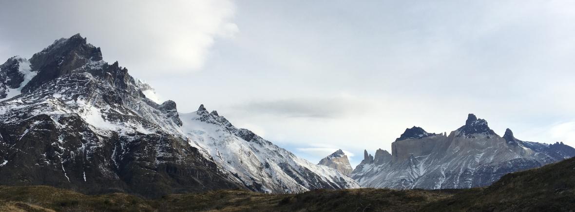 Wildlife in Torres del Paine, Chile, WildSide, World Wild Web