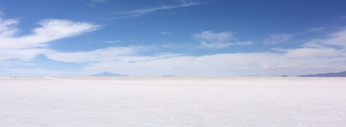 Wildlife in Salar de Uyuni, WildSide, World Wild Web