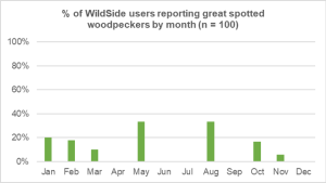 great spotted woodpecker one tree hill wildside world wild web