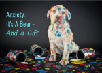 Anxiety:  Its a Bear – And a Gift