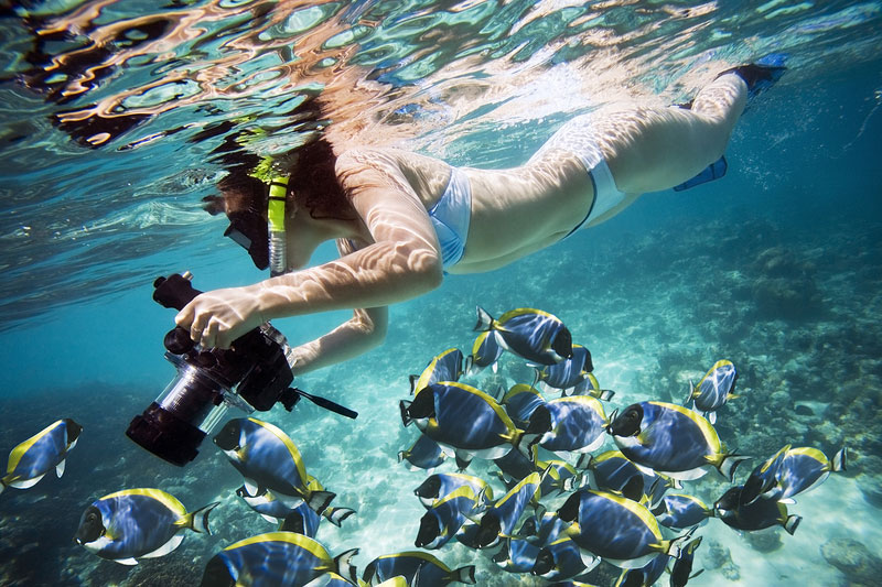 underwater-photography-tips4-e