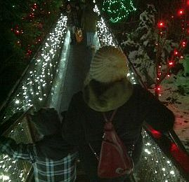 Capilano Canyon Lights: Enjoy the Holiday Magic
