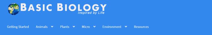 موقع Basic Biology