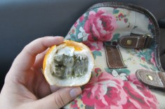 A granadilla fruit