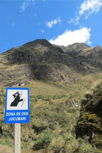 Andean (Jukumari) bears are protected in this area!