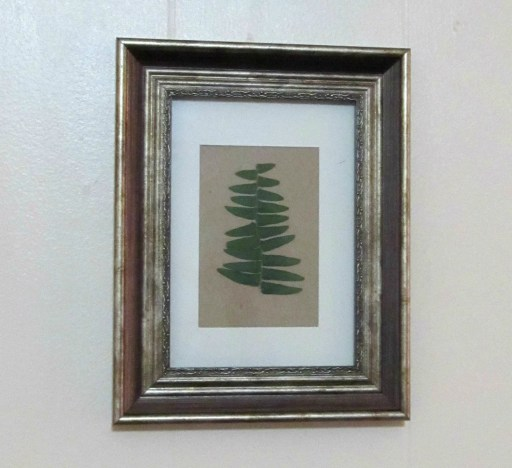 DIY pressed fern art