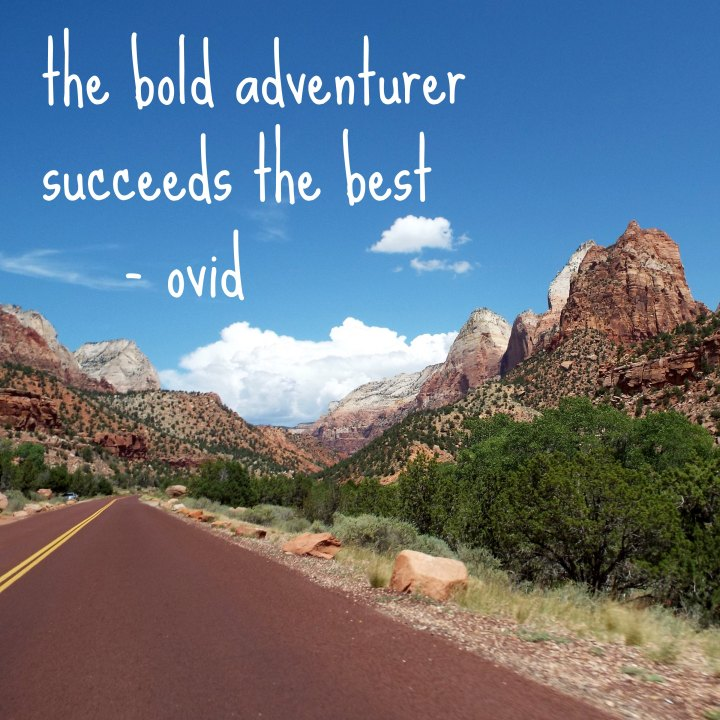 The bold adventurer succeeds the best. - Ovid