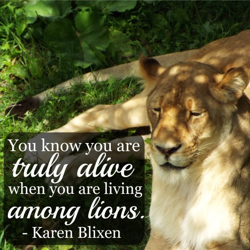 """You know you are truly alive when you are living among lions."" - Karen Blixen, Out of Africa"