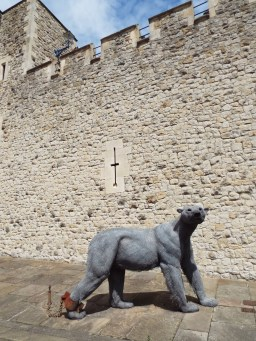 At one point the Tower of London was a menagerie!