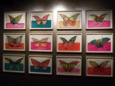 Butterflies by Zheng Donghui