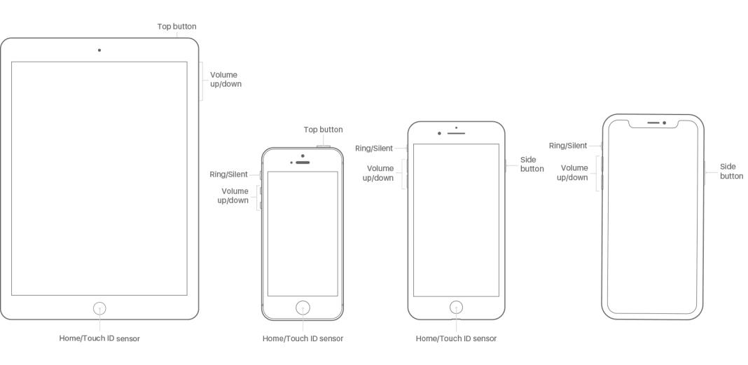 White Screen iPhone X