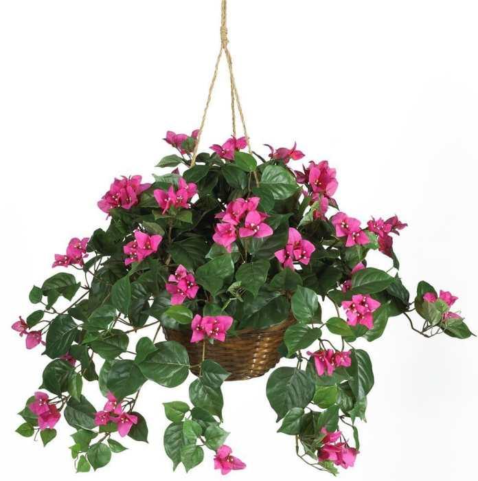 Floral display hidden camera