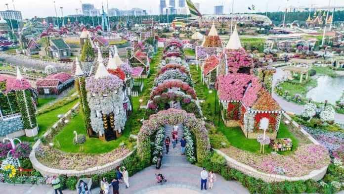 Dubai Garden in Dubai