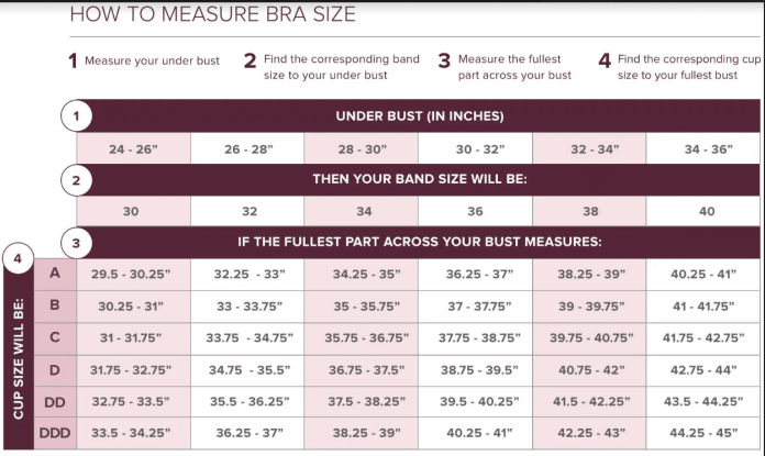 Measuring your bra size