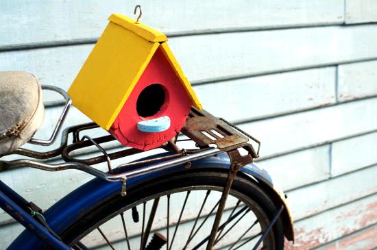 Bird house on bike © sakhorn38  dollarphotoclub.com