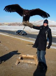 Here's Garrison, perfecting his falconry skills. In Mongolia.