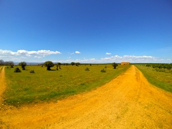 Another view out over the Spanish meseta. What an amazing place!