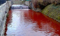 Myjava River of Blood photographed by Central European News via Daily Mail