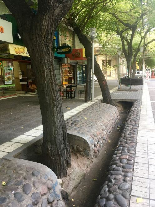 BLOG Mendoza, Cordoba, ROsario - 10 of 116