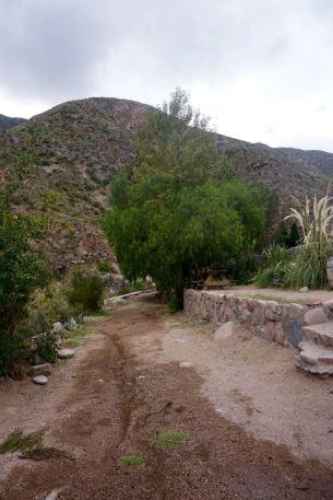 BLOG Mendoza, Cordoba, ROsario - 36 of 116
