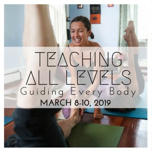 ALL LEVELS YTT, teacher training, the yoga house, hudson valley