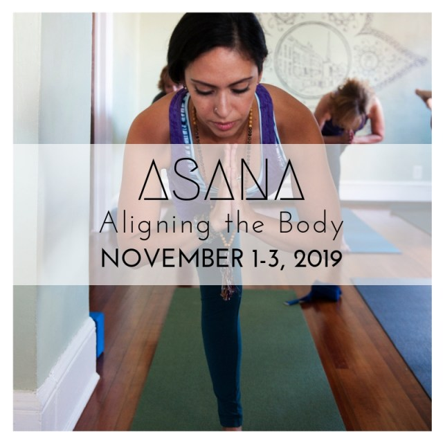asana YTT yoga kingston ny hudson valley