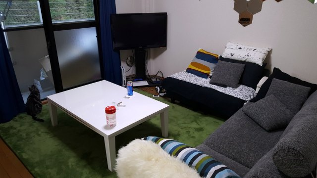 Apartments in Japan for Foreigners - Furniture