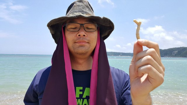 How Okinawa is Different from Mainland Japan - Coral on Beach