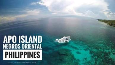 Watch This Epic Travel Video In Apo Island Negros Oriental Philippines