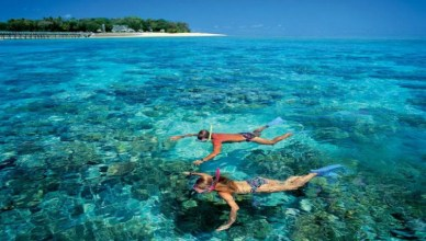 Worlds Most Perfect Snorkeling Destination You Should Definitely Visit - Great Barrier Reef Australia