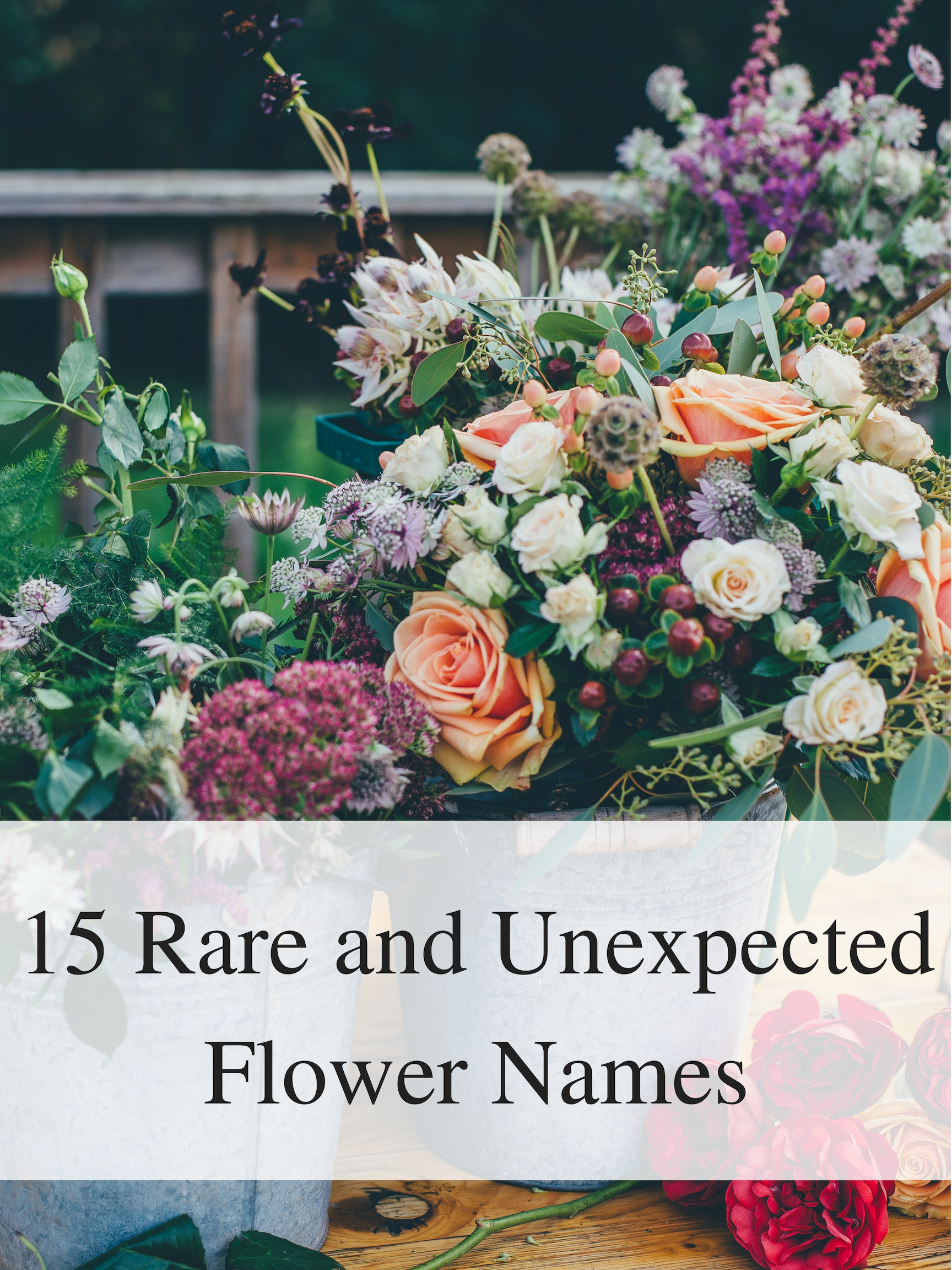 Rare and Unexpected Flower Names , The York Pack