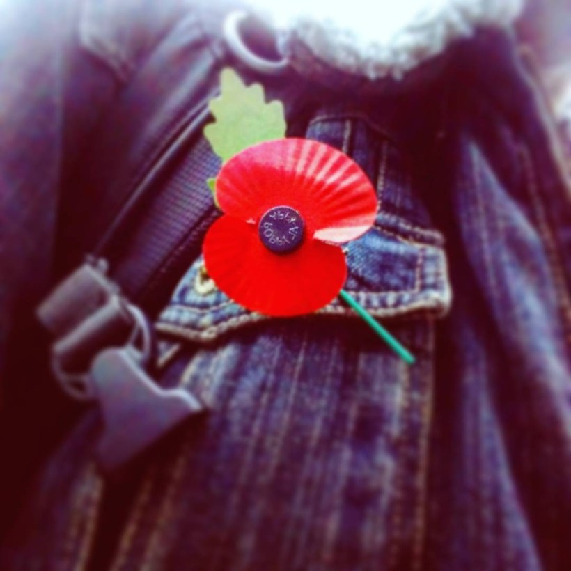 Red Poppy or White Poppy - the Yorkshire Dad of Four