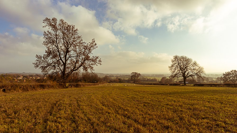 Long Shadows & Sheep - An Autumnal Afternoon Walk | The Yorkshire Dad of 4