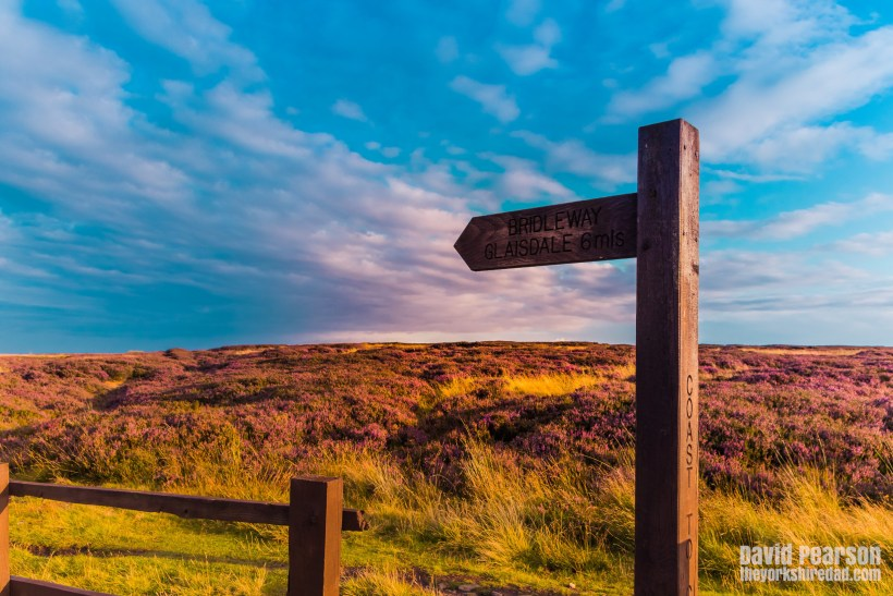 Evening Walk on Glaisdale Moor | The Yorkshire Dad of 4