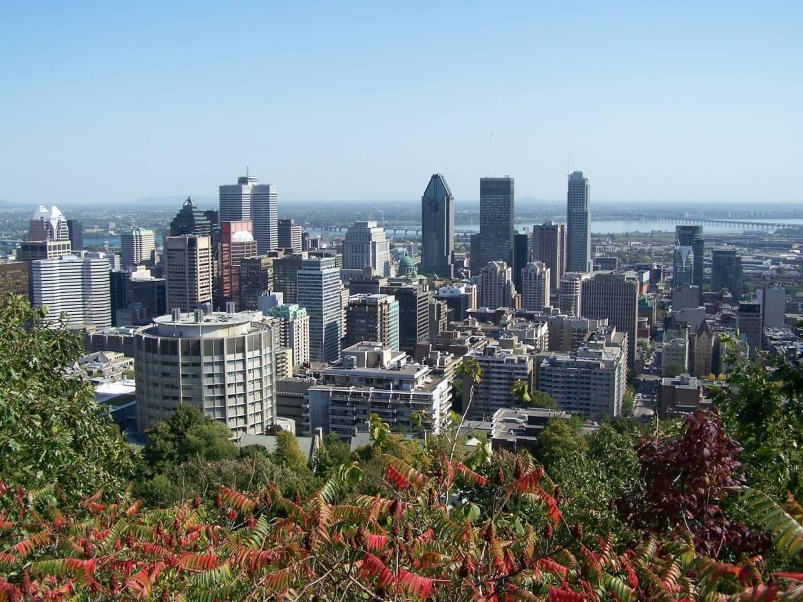 City de Montréal depuis le Mont Royal