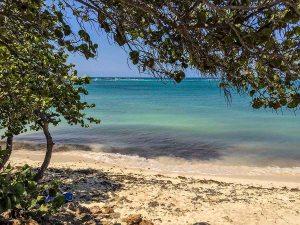 Rodgers Beach, Aruba.