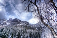 American Fork Canyon.